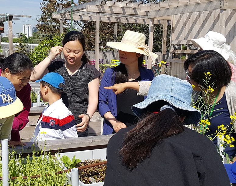 Learning tour with kids, working with gardening skills